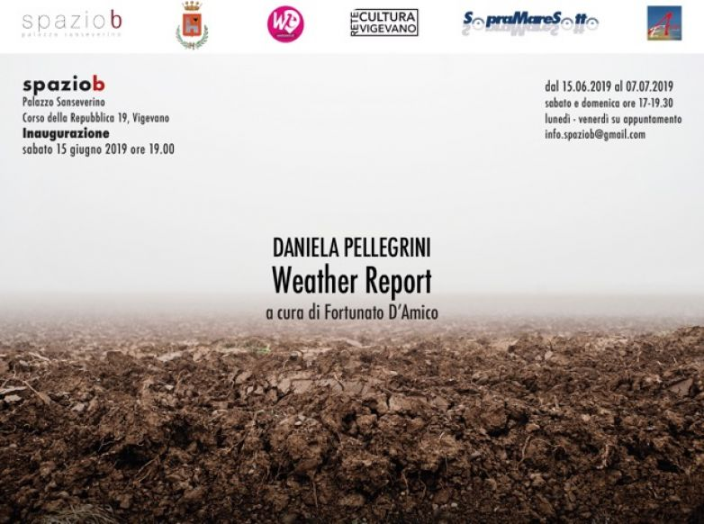 Weather Report - la mostra di Daniela Pellegrini