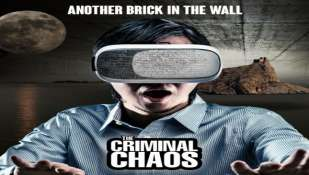 """Another Brick in the Wall""  Interpretata da THE CRIMINAL CHAOS"