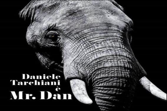 """""""Mr. Dan"""" il nuovo album  DANIELE TARCHIANI Dal oggi in tutti i negozi di dischi e webstore Distribuzione AudioGlobe"""